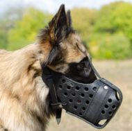 Leather dog muzzle for tervuren uk