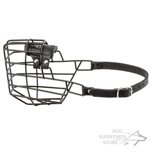 Basket Dog Muzzle in UK