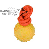 Dog Rubber Ball Hallow with Rope