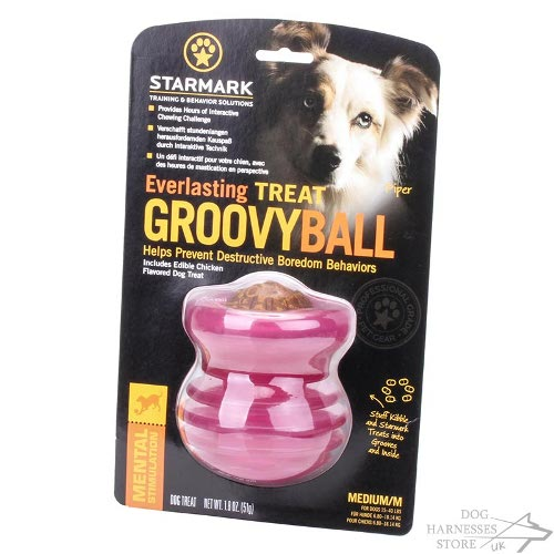 Groovy Ball Dog Toy UK