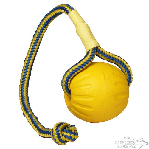 ball on a string dog toy