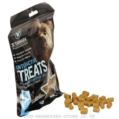 Best Dry Dog Treats UK