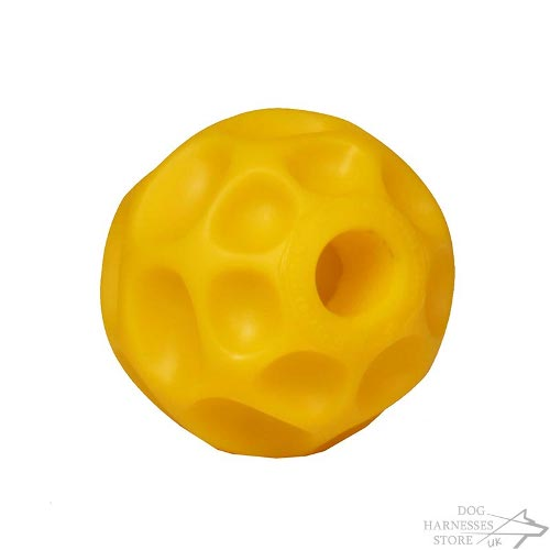 Dog Feeder Ball UK