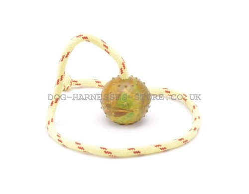 Rubber Dog Ball with Rope