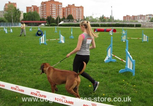 Fast