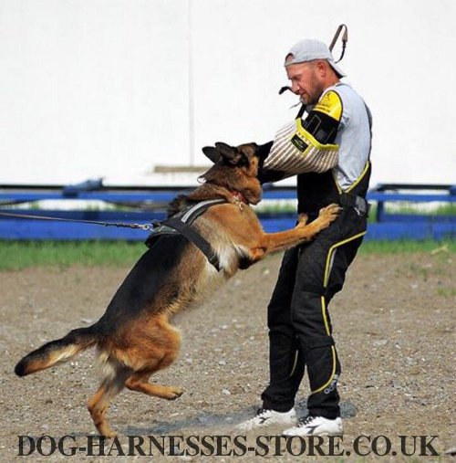 Bite Sleeve for Dog Training UK