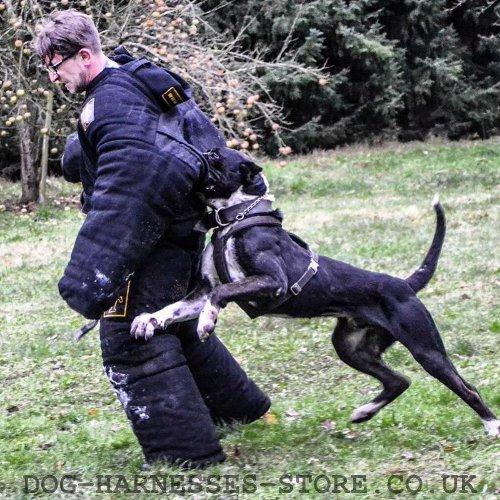 Dog Training Bite Suit for Sale UK