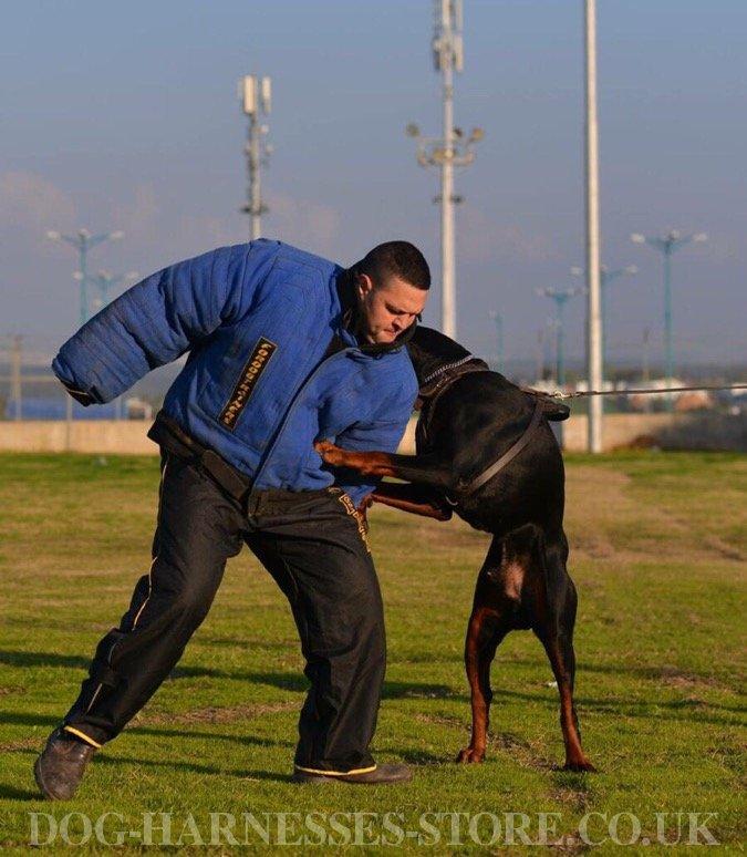 Attack Dog Training Suit for Maximum Trainer Protection