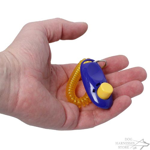 Clicker for Dog Training UK