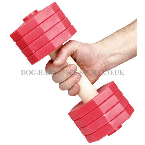 Dog Training Dumbbells UK