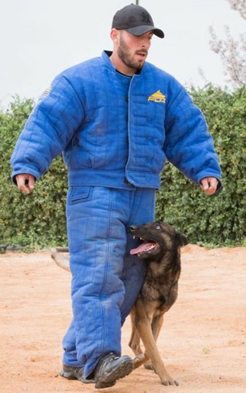 Dog Training Handler Jacket