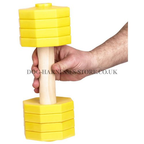 Dumbbell for Dogs Training