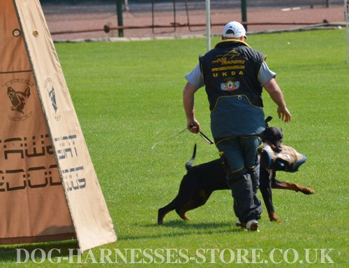 IPO Dog Training Suit UK