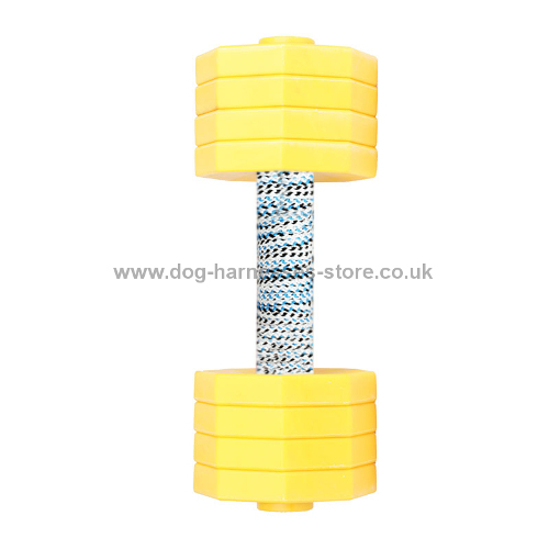 Plastic Dumbbell for Dogs