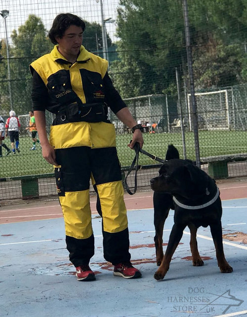 IGP Dog Training Suit UK