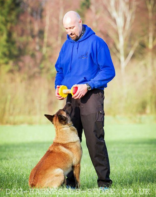 IGP Dumbbell for Dogs UK