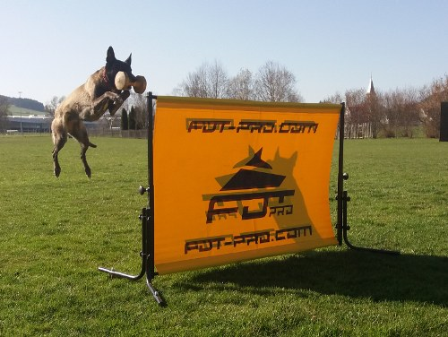 Schutzhund Jumps for Sale