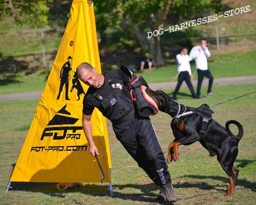 Attack Dog Training : Dog walking harness and anti pull
