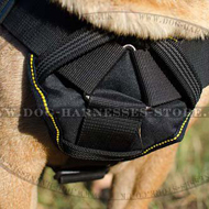 Dog Sport Harness for Shar Pei of Nylon, Ideal for Training