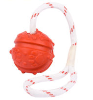 Fun Ball on String, Fight Bad Breath dog toy UK