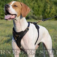 Bestseller! Pointer Dog Harness Leather for Tracking, Training