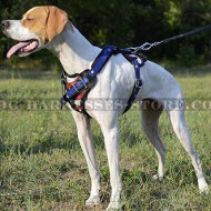 Handmade Dog Harness with USA Flag Drawing for English Pointer