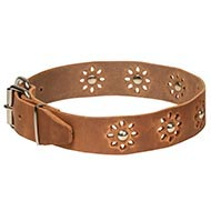 "Floral Leather Dog Collar Punched Flowers - ""Spring Madness"""