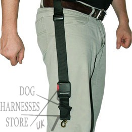 Handsfree Dog Lead UK, Nylon