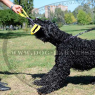 French Linen Bite Tug with Handles for Black Russian Terrier