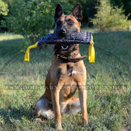French Linen Bite Tug for German Shepherd and Belgian Malinois