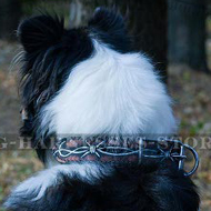 """Barbed Wire"" Hand Painted Leather Dog Collar for Collie Style"