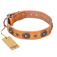 "Handmade Leather Dog Collar ""Twinkle Twinkle"" by FDT Artisan"