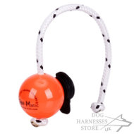 Hard Plastic Ball for Dog Top-Matic with Multi Power-Clip