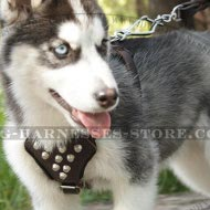 Harness for Siberian Husky Puppy, Leather with Decorative Cones