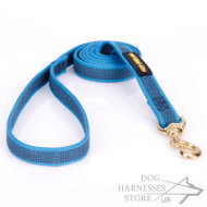 Heavy-Duty Nylon Dog Leash Non-Slip Design, Blue Color