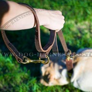 Labrador Dog Leash of Leather for Over 7 Different Activities