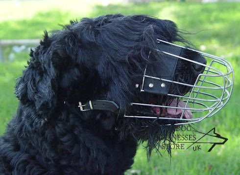 Black Terrier wire basket dog muzzle