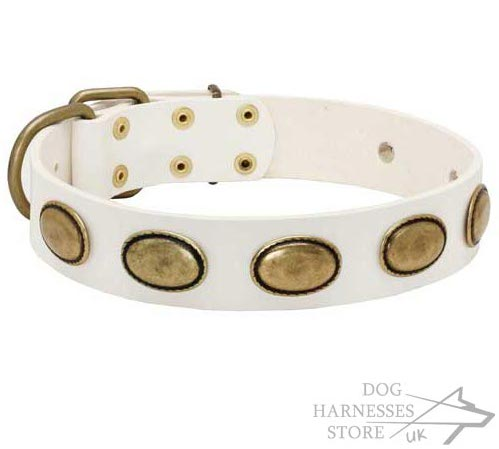Shabby Chic White Dog Collar Leather with Brass Brooches