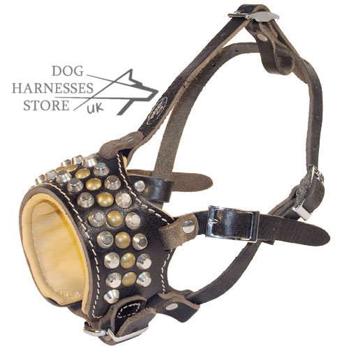 Leather Dog Muzzle UK with Studs and Pyramids, Nappa Padded