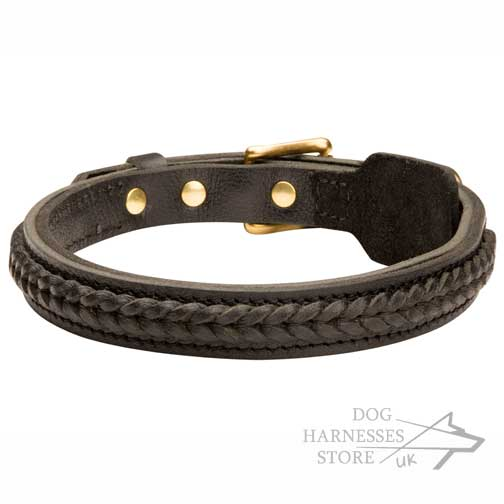 Braided Dog Collar UK