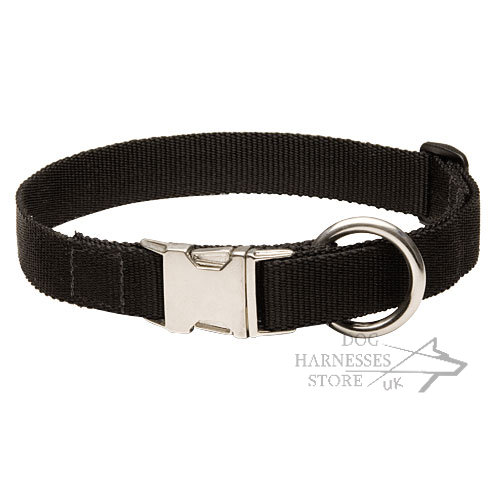 Classic Dog Collar Nylon, Adjustable with Handy Buckle