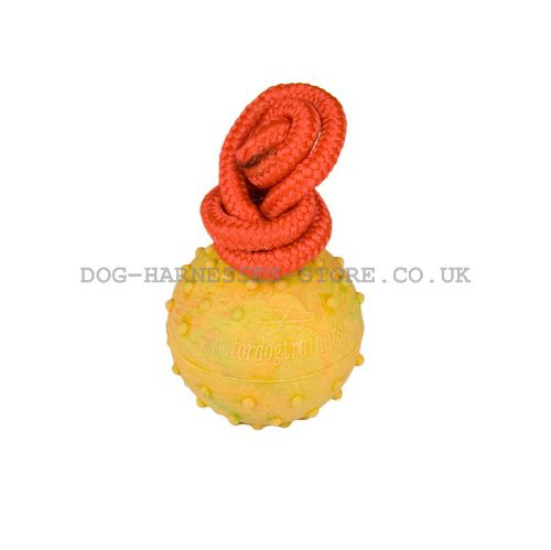 Rubber Ball for Dogs, Hollow Inside on Firm Nylon String