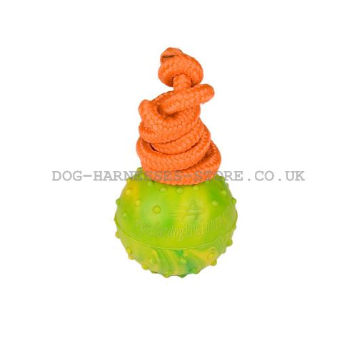Dog Training Ball of Solid Rubber on Nylon Rope, 5 cm