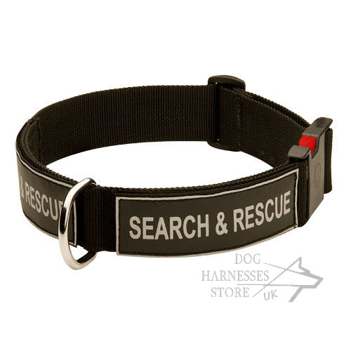 Quick Release Collar for Dogs