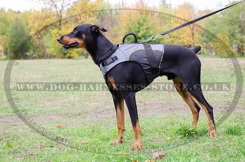 Dog Harness Vest for Doberman, Mobility and Support Nylon Jacket - Click Image to Close