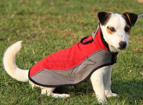 Dog Waterproof Coat for Jack Russel Terrier