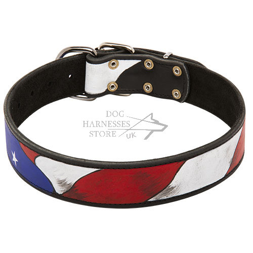 "Exclusive Dog Collar with ""American Pride"" Hand Painting"