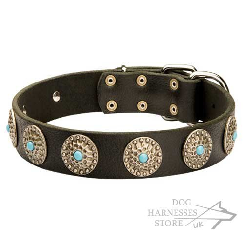 Fancy Designer Dog Collar Blue Stones and Circles Decoration