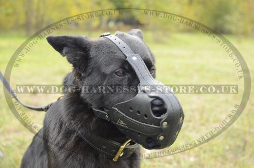 German Shepherd Muzzle of Thick Leather for Work and Training