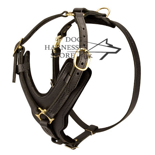 Large Dog Harness UK